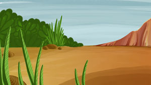 009-desert-oasis1
