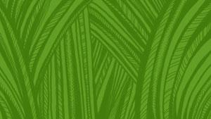 034-grass