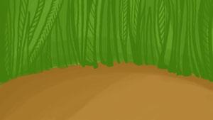 037-grass